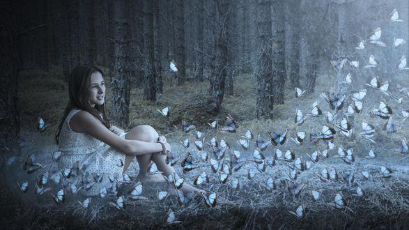 Обои Девочка, сидя в лесу, смотрит на рой бабочек, порхающих около нее