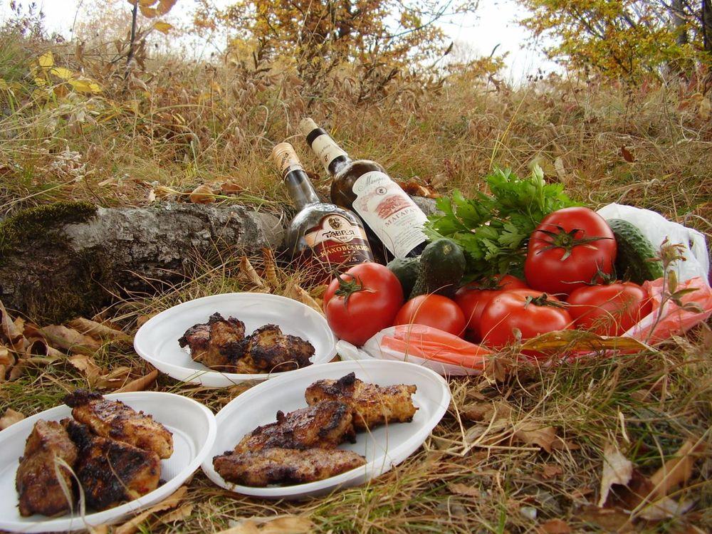 фото пикника с шашлыками на природе ладно