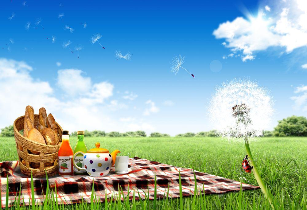 Обои для рабочего стола Пикник с вкусной едой и чаем на природе