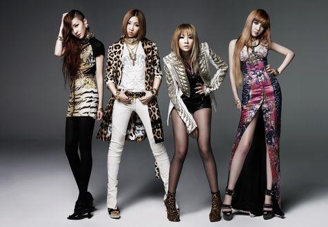 Обои Группа 2ne1, K-pop, азиатки в модной одежде позируют на сером фоне, Южная Корея