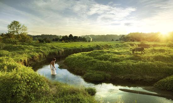 Обои Девушка стоит в речке среди зеленого простора природы, рядом пасется ослик