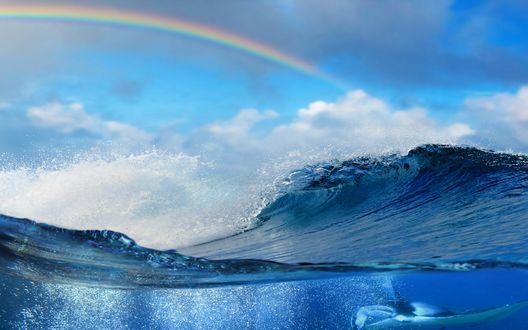 Обои Океанская волна на фоне радуги