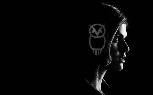 Обои Американская актриса Александра Анна Даддарио / Alexandra Anna Daddario с рисунком на голове в виде совы