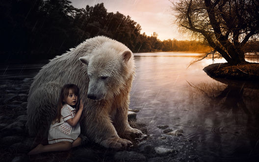 Обои Девочка сидит возле белого медведя на берегу реки, под дождем