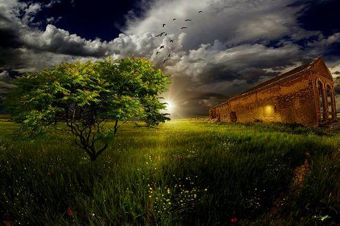 Обои Заброшенное здание в поле, на переднем плане дерево на фоне облачного неба с восходящим солнцем, ву Carlos Santero