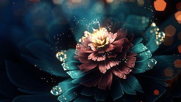 Обои Красивый абстрактный цветок