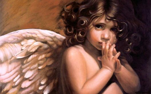 Обои Грустный мальчик-ангел сложил руки вместе
