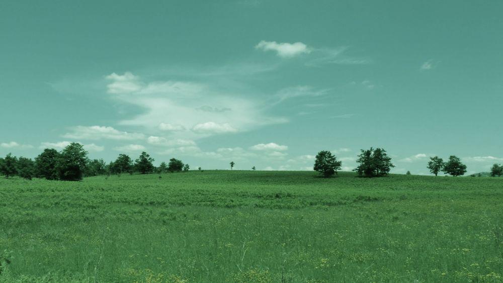 зеленое поляна эротика