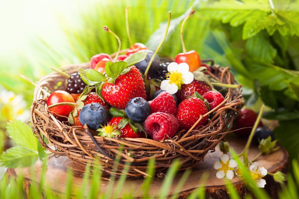 Земляника лесная: Полезные свойства ягод и листьев земляники ...   667x1000