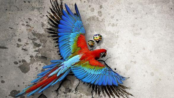 Обои Рисованный арт попугай Ара