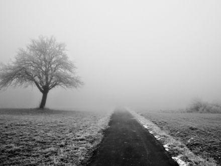 Обои Дорога уходящая в туман