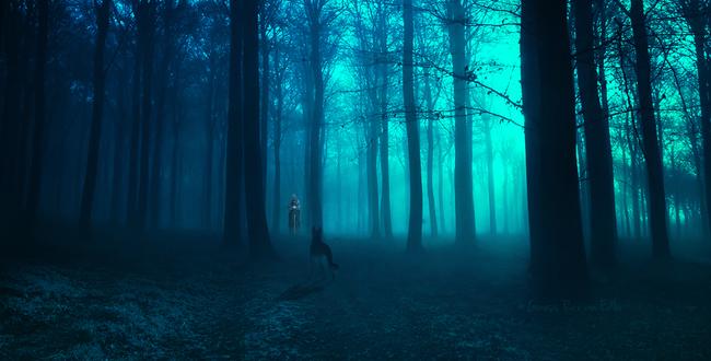 Обои Пес стоит на дороге в лесу перед человеком в плаще, by razielmb