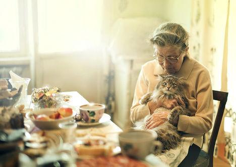 Обои Работа После юбилея, бабушка с котом сидят за столом, фотограф Андрей Белозеров