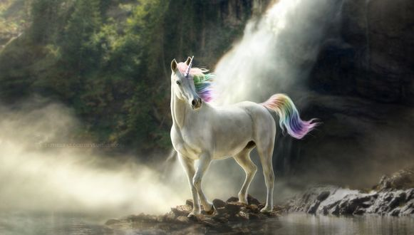 Обои Белая лошадь-единорог с цветным хвостом и гривой, by Sapphire-Cloud