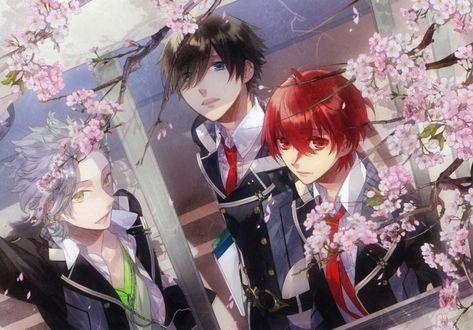 Обои Kanata, Suzuya и Yoh в школьной форме любуются цветущей сакурой, аниме Starry sky / Звездное небо, art by Kazuaki