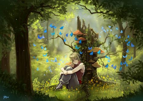 Обои Парень (или девушка) сидит в траве, прислонившись спиной к сломанному дереву, вокруг летают голубые бабочки, автор Radittz
