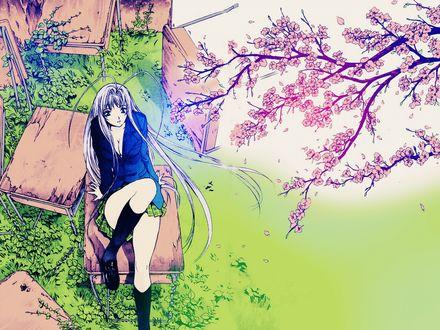 Обои Maya Natsume / Мая Нацумэ из аниме Tenjou Tenge / Небо и земля