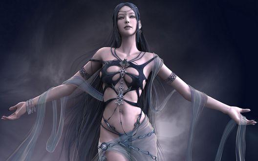 Обои Shaiya в эротичном раряде на сером фоне из игры Light and Darkness