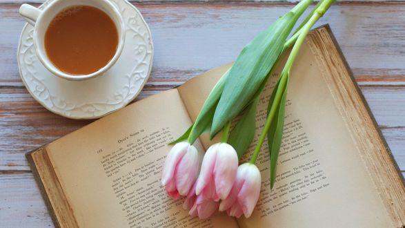 Обои Букет тюльпанов лежит на раскрытой книге, рядом чашка какао