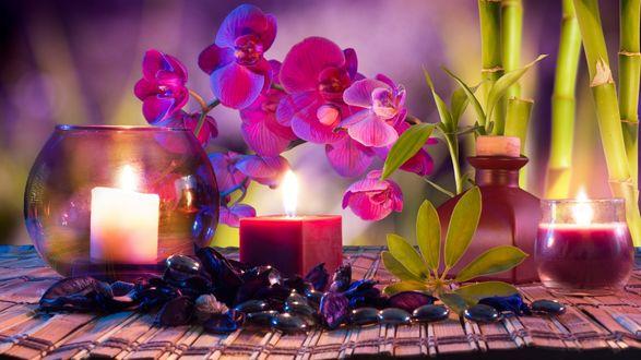 Обои Арома-свечи с камешками для релакса рядом с веткой орхидеи и бамбука
