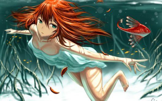 Обои Девушка плавая под водой смотрит на красную рыбку