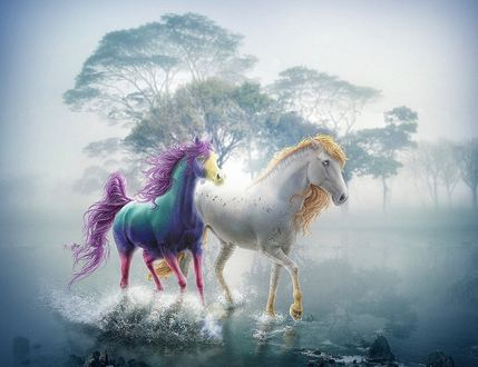 Обои Две лошади необычной окраски бегут по воде