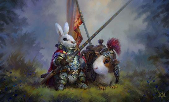 Обои Кролик-рыцарь и морская свинка-боевой конь