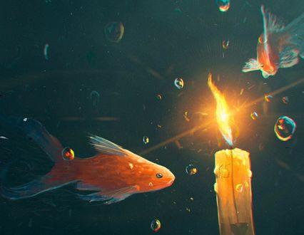 Обои Золотые рыбки и горящая свеча под водой
