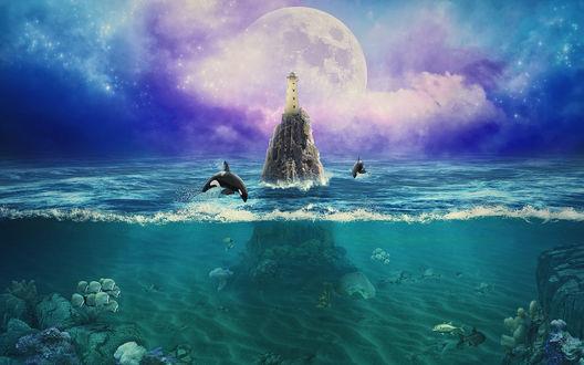 Обои Касатки резвятся в воде около скалы, на вершине которой высится маяк