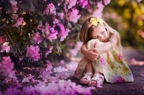 Обои Девочка сидит на аллее у кустов роз
