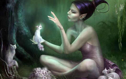Обои Эльфийская девушка в волшебном лесу с кошками