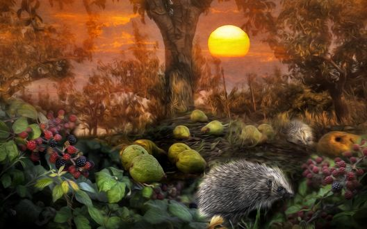 Обои Ёжики сидят на поляне среди ягод и фруктов