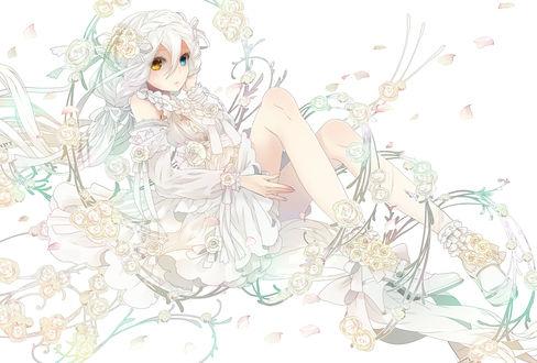 Обои Девушка с разноцветными волосами среди белых роз