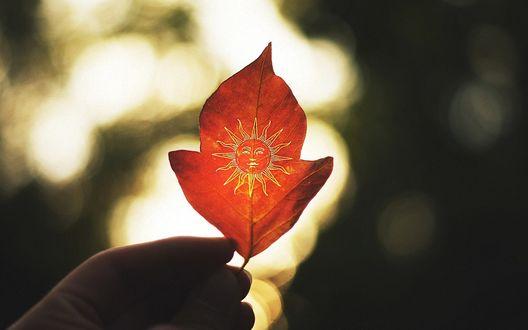 Обои Человечья рука держит красный осенний лист с нарисованным Солнцем, на размытом фоне