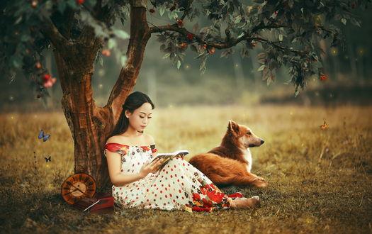 Обои Девушка с собакой сидят под деревом, рядом летают бабочки