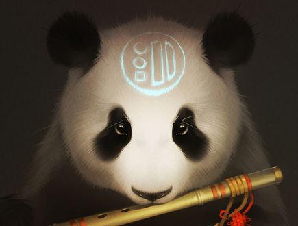 Обои Панда со знаком на лбу играет на флейте лимба