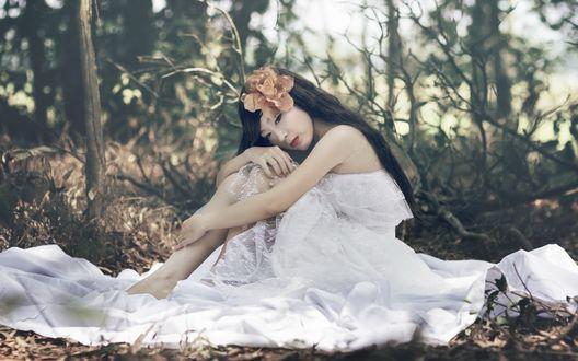 Обои Девушка азиатка в белом платье сидит на траве в лесу