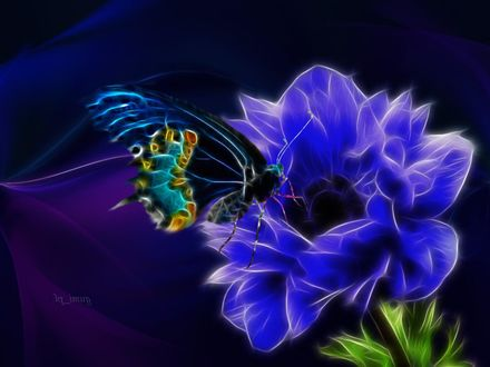 Обои Бабочка на голубом цветке