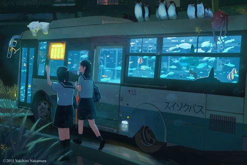 Обои Две девушки в школьной форме проходят мимо автобуса, в салоне которого плавают рыбки, на крыше лежит белый медвежонок и сидят пингвины