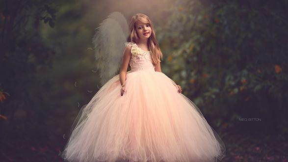Обои Девочка в пышном платье