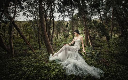 Обои Девушка азиатка в белом платье