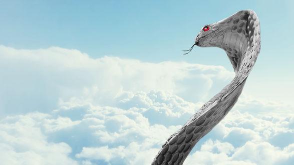 Обои Змея с красными глазами на фоне неба