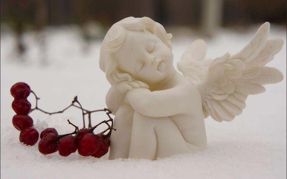 Обои для рабочего стола Ангел на снегу, Лефортовский парк, Москва, Россия