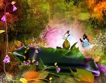 Обои Волшебные картинки природы
