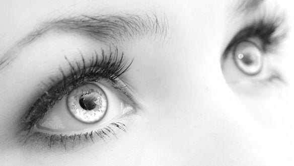 Картинки по запросу глаза девушки