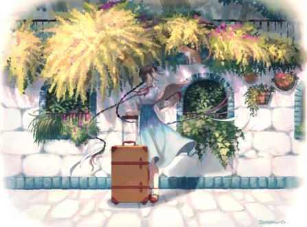 Обои Девушка с чемоданом смотрит на кошку