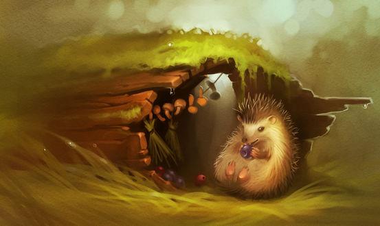 Обои Рисунок ежика в норке поваленного дерева, сидит в траве и поедает ягоды