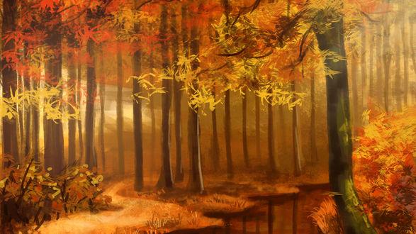 Обои Речка протекает через осенний лес