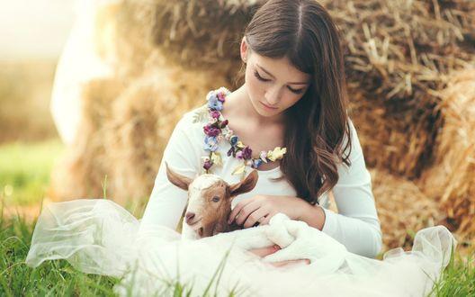 Обои Девушка в белом платье с козленком на руках сидит на зеленой траве у стога сена