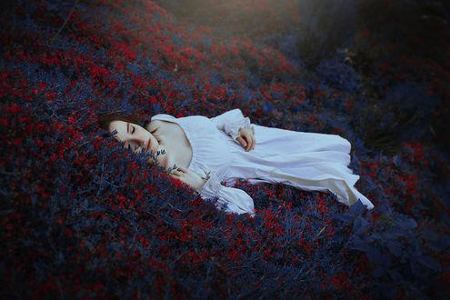 Обои Девушка лежит в траве, by Ronny Garcia